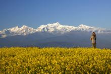 Bandipur Views Of Annapurna Ra...