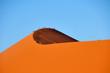 canvas print picture - Dune 45