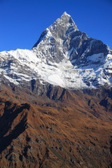 Top of Machhapuchhre