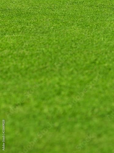 Poster Golf Agrarfläche