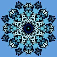 Blue Kaleidoscope Butterflies