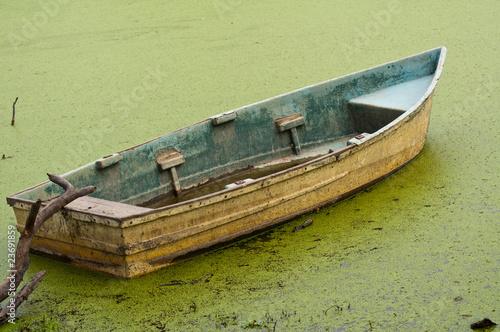 Valokuva  floating on algae