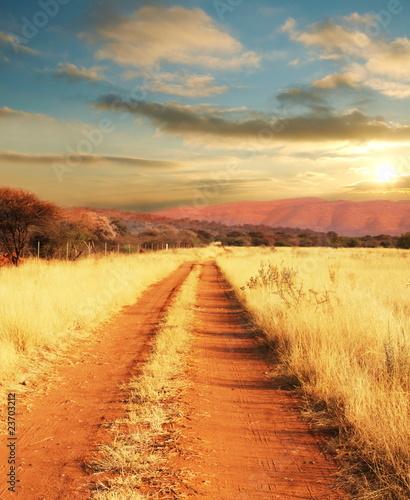 Poster Oranje eclat African landscapes