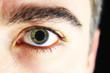canvas print picture - männliches Auge