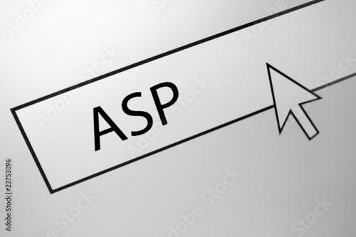 ASP Canvas Print