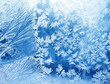 Leinwanddruck Bild - Eisblumen