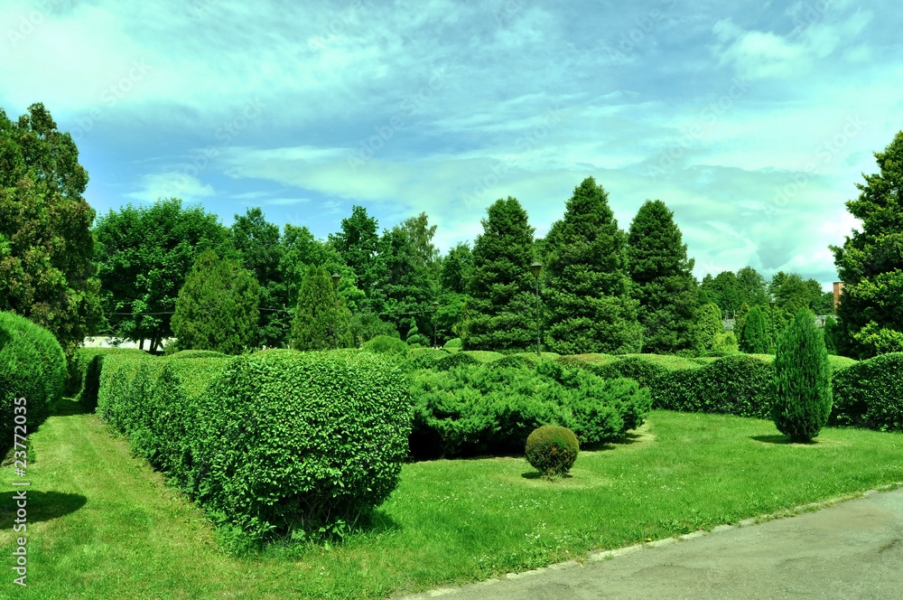 Park ogród