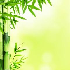 Panel Szklany Podświetlane Eko Bamboo
