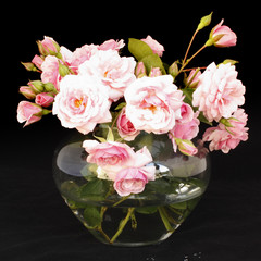 Obraz na Plexi Florystyczny Kleine, hellrosa Rosen in Vase vor schwarzem Hintergrund