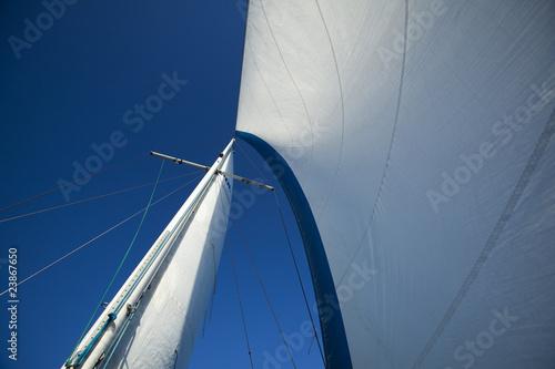 Garden Poster Sailing Sea, sun and sail
