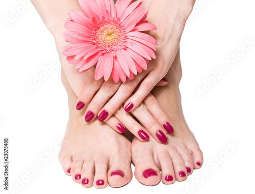 Obraz na plátně  Pink manicure and pedicure with a flower