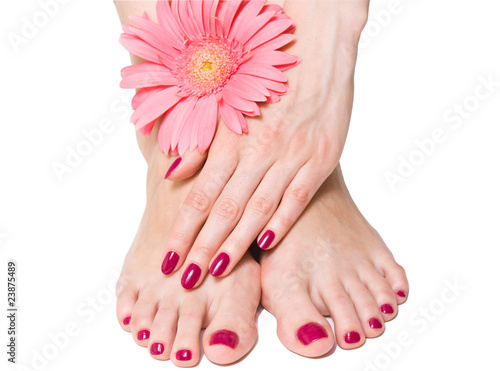 Fotografie, Obraz  Woman hand and feet with manicure and pink flower