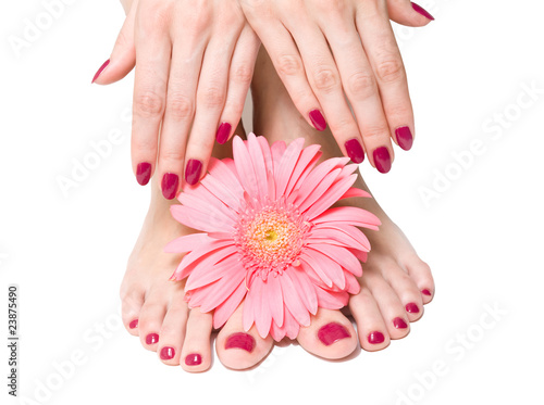 Obraz na plátně  Pink manicure and pedicure with a delicate flower