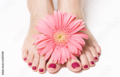 Fotografie, Obraz  Feet with pink manicure and gerbera