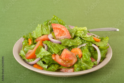 Fotografie, Obraz  Tossed salad