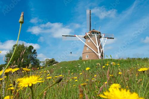 Poster Molens mill