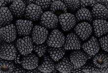 Black Blackberry Texture Or Background
