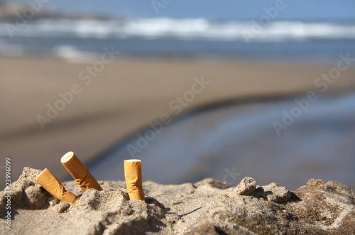 Fotografia, Obraz  three cigarette butts on beach