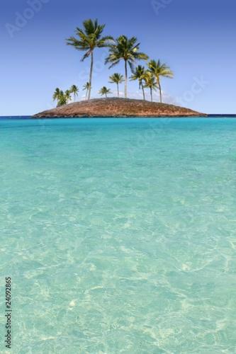 Staande foto Eiland Paradise palm tree island tropical turquoise beach