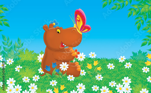 Poster de jardin Zoo Hippo and butterfly