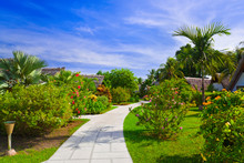 Pathway And Bungalows In Tropical Park