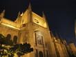 Catedral de Segovia por la noche