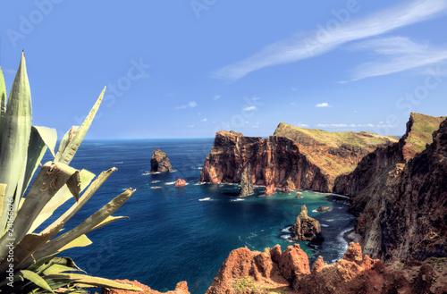 Fotografie, Obraz  East  coast of Madeira island – Ponta de Sao Lourenco