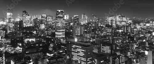 Montage in der Fensternische Tokio Tokyo at night panorama, b&w