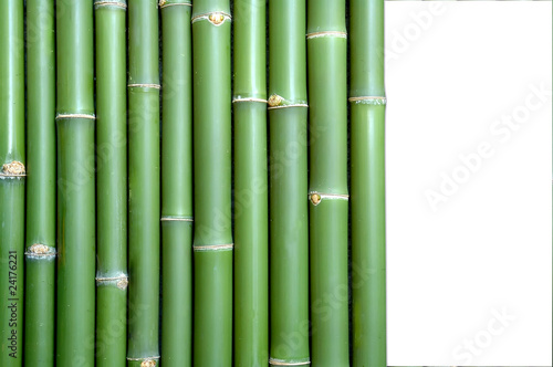 Recess Fitting Zen bamboo background