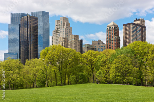 Pinturas sobre lienzo  NYC, Central Park view