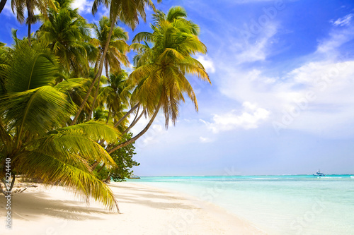 Fotobehang Caraïben paradise beach