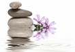 Equilibrio zen.