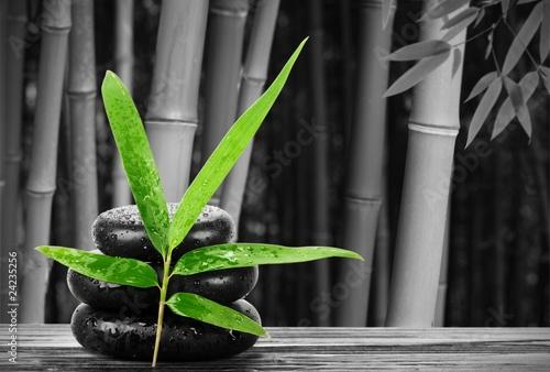 zdroju-wciaz-zycie-z-bambusowym-lisciem-i-zen-kamieniem