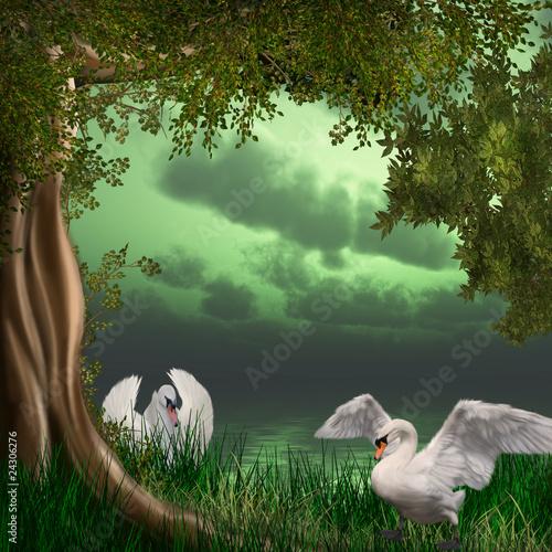 labedzie-jezioro
