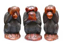 3 Monkies