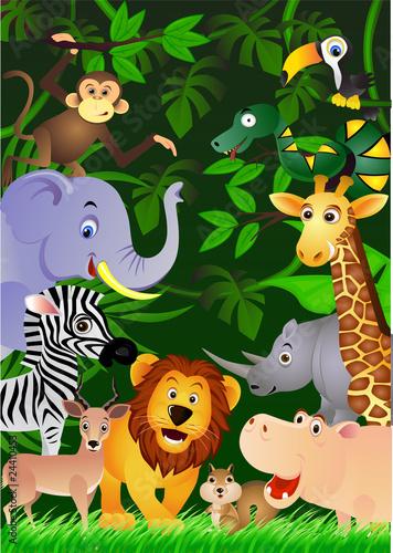 zwierze-w-dzungli