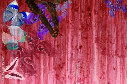 Foto auf AluDibond Schmetterlinge im Grunge grunge red color background with butterflies