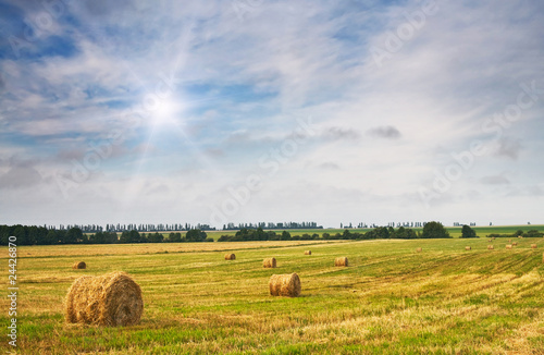 Haystack And Stubble By Summertime Buy This Stock Photo