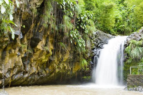 Photo Stands Caribbean Annadale Falls, Grenada