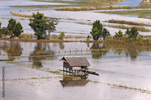 Flooded fields around Inle lake ( during monsoon ) in Burma. Fototapete