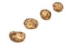 Lincoln New Potatoes