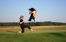 Funny Catching Dog Frisbee