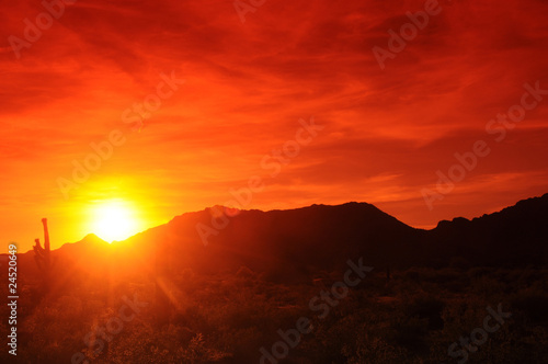 Photo Stands Brown Arizona Sunset