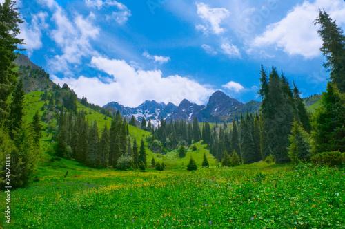 Aluminium Prints Green Mountain landscape
