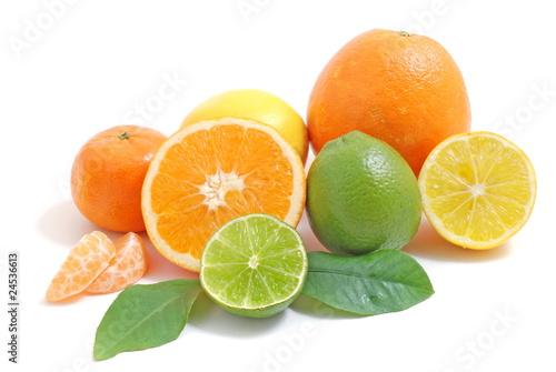 Fototapeta Arrangement mit Zitrusfrüchten/citrus fruits