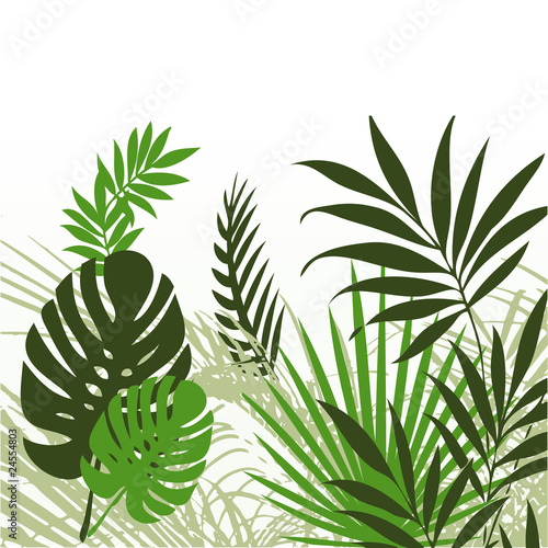 tropikalne-liscie-01