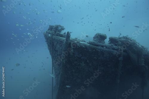Photo Stands Shipwreck relitto equa liguria