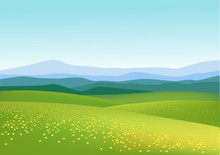 Nature Green Field Background