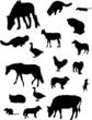 farm animal silhouettes set
