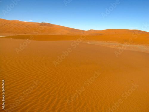 Foto op Aluminium Koraal desert and sand dunes